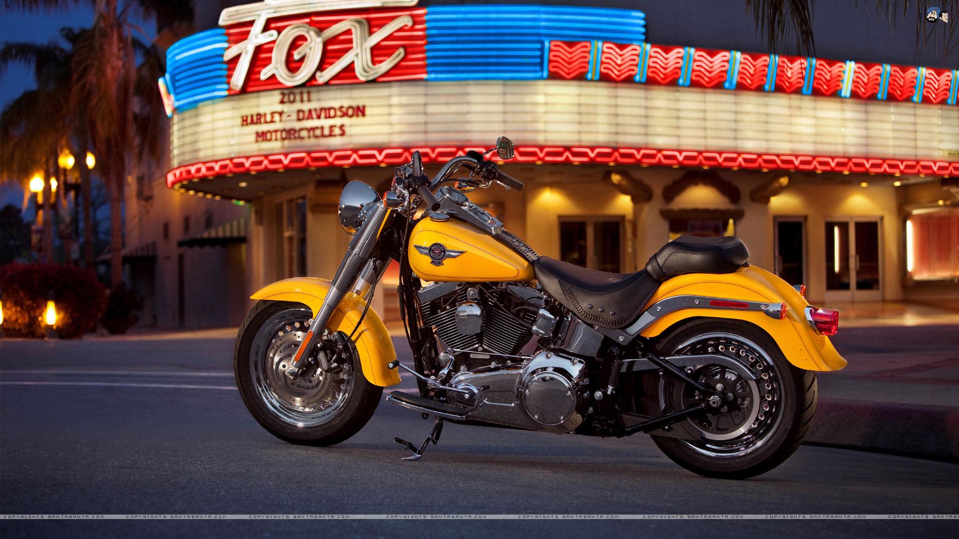 davidson harley photos bikes full x