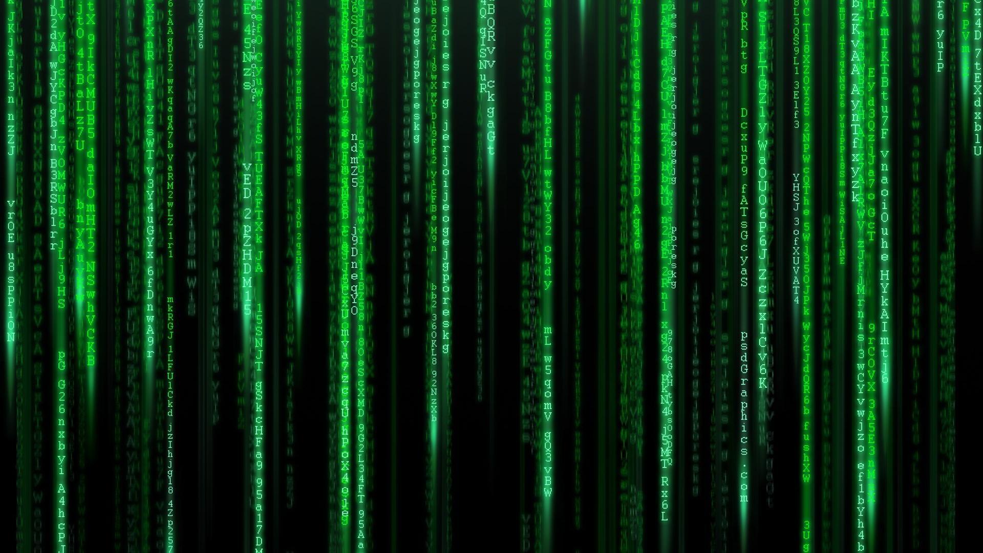 fonds d'écran matrix : tous les wallpapers matrix