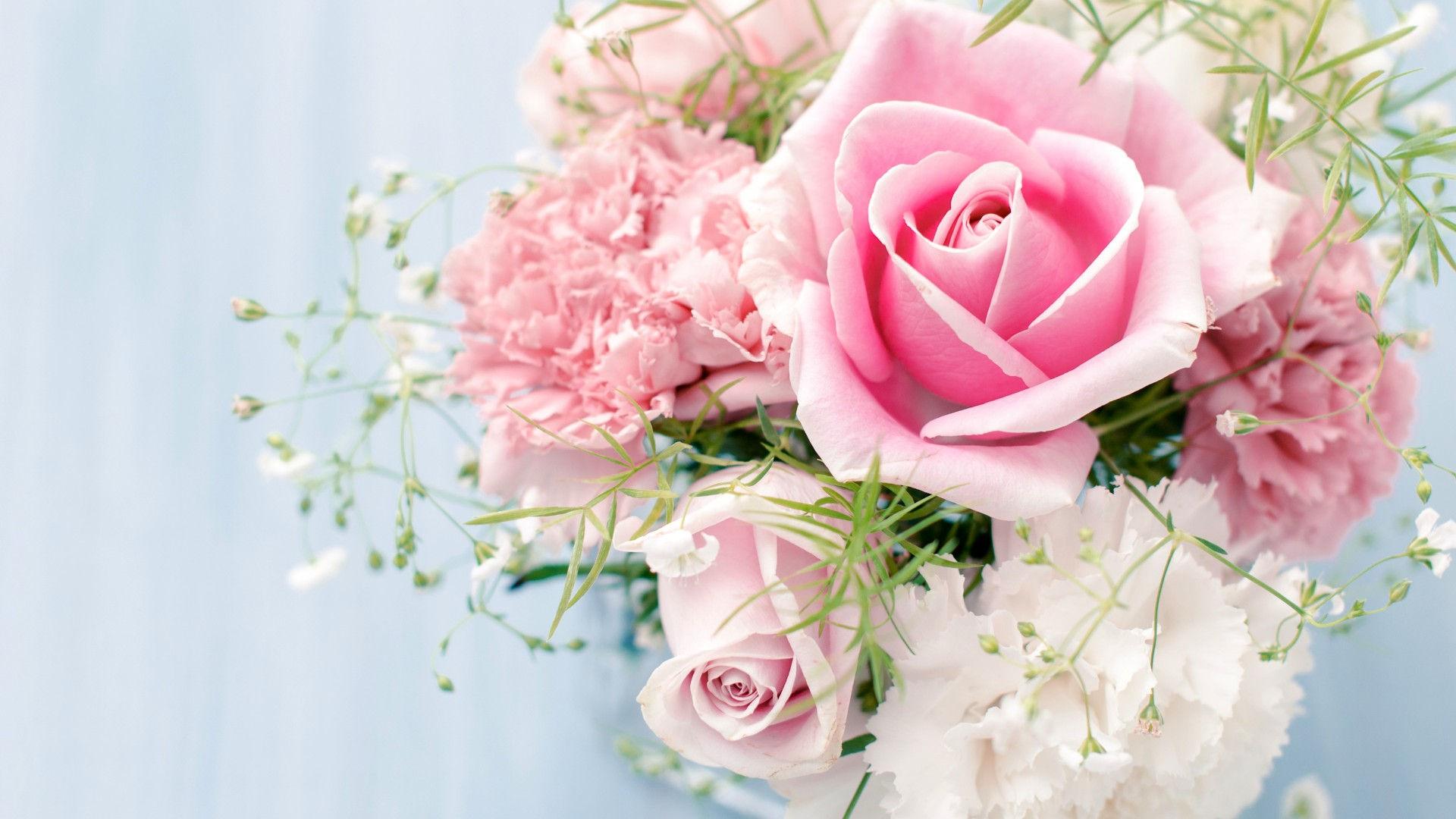 Wallpaper rose hd gratuit t l charger sur ngn mag for Bouquet de fleurs hd